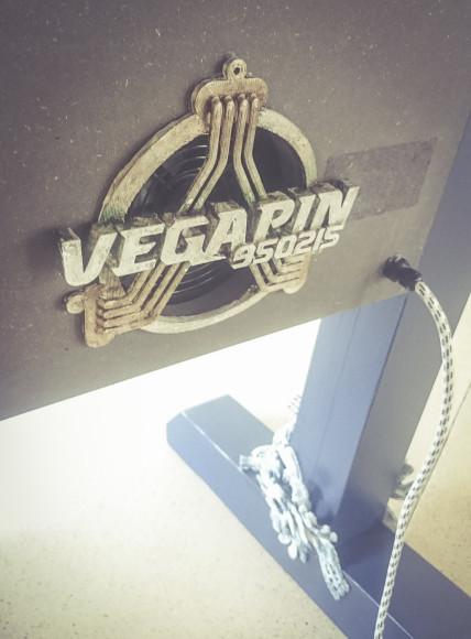 080116 Vegapin_14